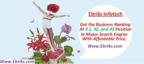 Ebriks-Content marketing statergy